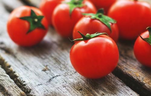 Būtiskākie tomātu kaitēkļi siltumnīcās