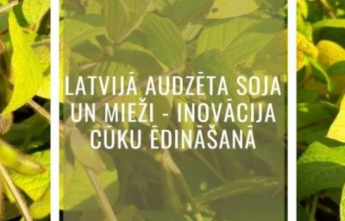 """Viss par soju virtuālajā grāmatā: """"Latvijā audzēta soja un mieži – inovācija cūku ēdināšanā"""""""