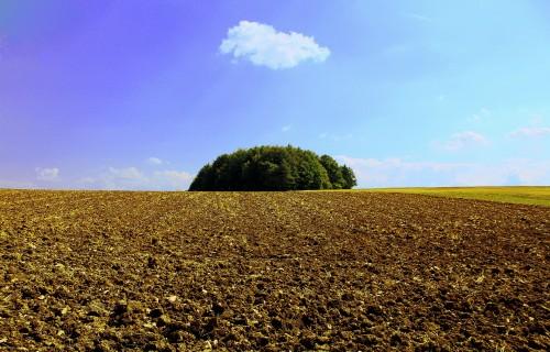 Šovasar sākta Latvijas lauksaimniecības zemes izpēte Rīgas reģionā, Zemgalē un Vidzemes augstienē