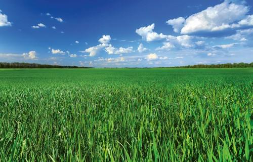 Lauksaimniecības ienesīgums un izmantošana no dažādu politiku aspektiem