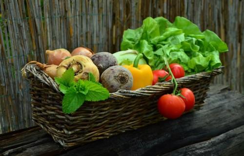 LLKC veido tālmācības moduļus Ukrainas lauksaimniekiem