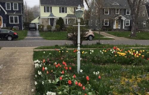 Ceļasomā – zemes un dārza mīlestība