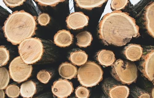 Meža produktu imports pērn 11 mēnešos samazinājies par 0,7%