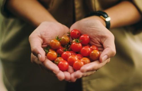 Jauniešiem konferencē marta beigās stāstīs par lauksaimniecībā aktuālajām profesijām