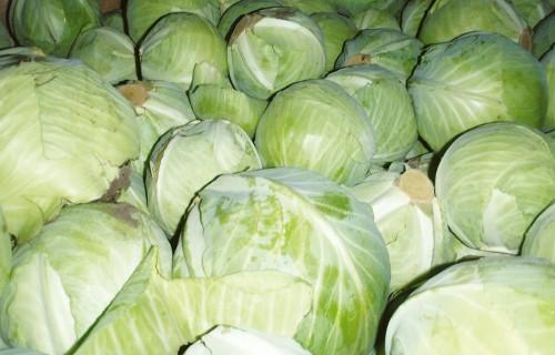Slimības dārzeņu un augļu glabātavās