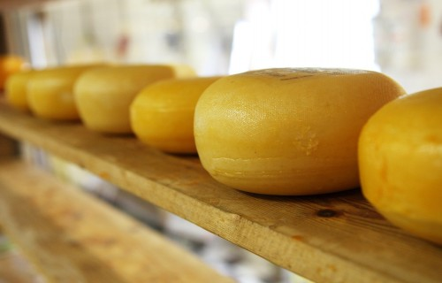 """""""Siera klubs"""": Tirgotājiem interese par Jāņu sieru patlaban ir mazāka nekā pērn"""