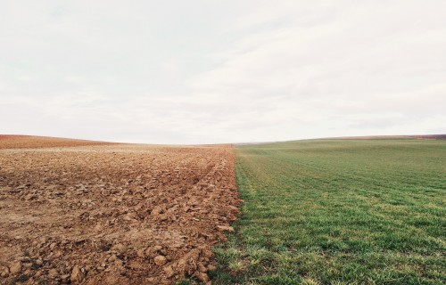 Latvijā lauksaimniecības zemes cena viena no zemākajām Eiropā