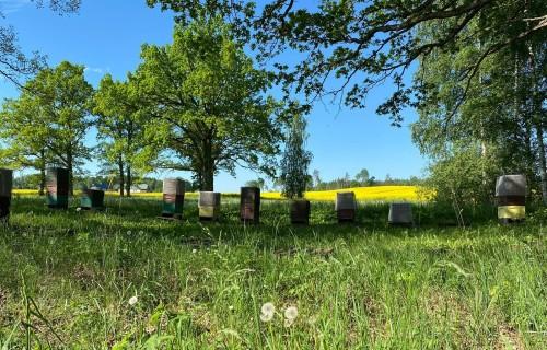 Par kopīgu saimniekošanu un līdzāspastāvēšanu lauksaimniecībā