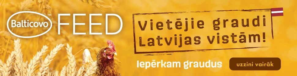 Balticovo
